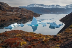 Icebergs and autumn tundra, Red Fjord, Scoresby Sound, Greenland.