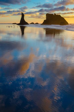 Seastacks and reflections, Oregon.