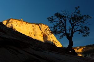 Last light on mesa, Zion National Park, Utah.