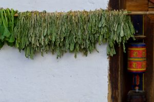 Prayer wheel and drying herbs, on a house in Phobjikha, Bhutan.