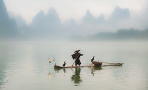 Fisherman with cormorants, on Li River, near Xingping.