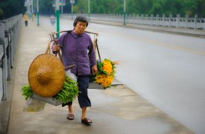 Woman with shoulder pole carrying pumpkin flowers, Yangshuo.