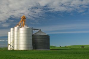 Grain storage, Washington.