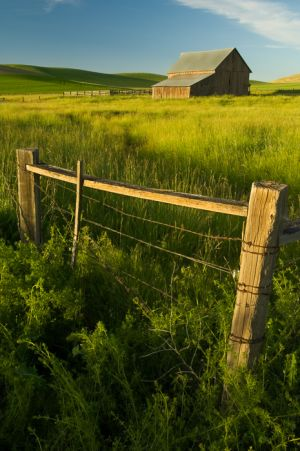 Machinery shed and fence, Washington.