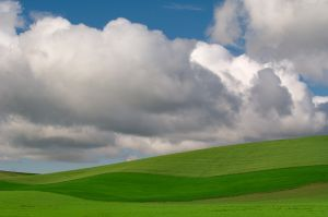 Summer clouds and wheat fields; Washington.