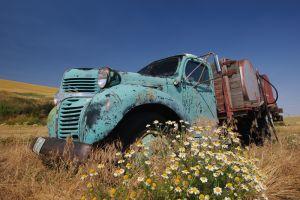 Old Dodge truck, Washington.