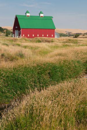Bright red barn and summer grasses, Washington.