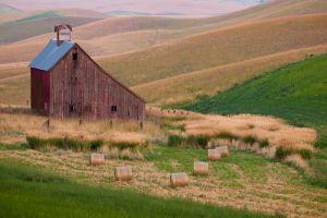 Barn and rolled hay bales, Idaho.