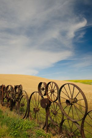 Fence made from metal implement wheels, Uniontown, Washington.