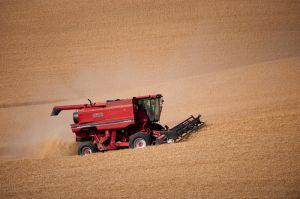 Combine harvesting wheat, Washingon.