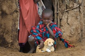 A young Masai boy and his puppy watch from the doorway of a Masai house; Masai Mara, Kenya.