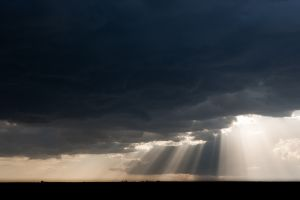 Crepusluar rays, also known as god beams, foretell an approaching storm rolling across the Masai Mara plains in Kenya.