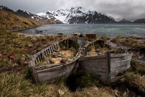 Old whaling boats at Godthul, South Georgia.