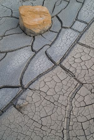 Rock and cracked mud