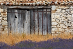 Lavender field and old stone building, France.